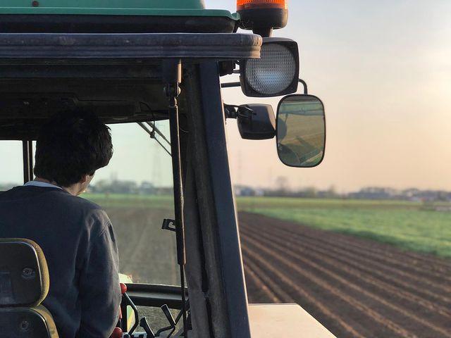 Henri Welvaert | Verse aardappelproductie